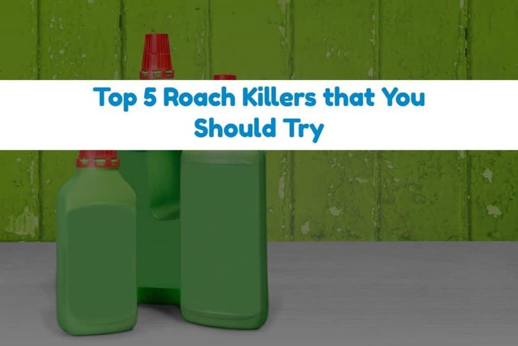 Best Roach Killer